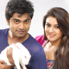Simbu and Hansika are in Love