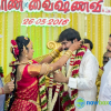Kalaignanam Grandson Wedding Reception Photos