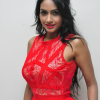 Pooja Sree New Photos