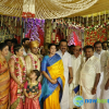 Chandrasekhar Daughter Marriage Photos