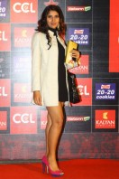 Celebrity Cricket League 3 Curtain Raiser Event Photos (6)