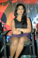 Chammak Challo Movie Platinum Disc Function