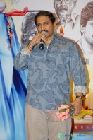 Chinna Cinema Movie Audio Release (41)