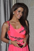Geeta Basra At Zilla Ghaziabad Movie Audio Launch (13)