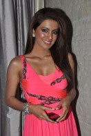 Geeta Basra At Zilla Ghaziabad Movie Audio Launch (19)