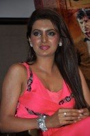 Geeta Basra At Zilla Ghaziabad Movie Audio Launch (2)