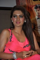 Geeta Basra At Zilla Ghaziabad Movie Audio Launch (3)