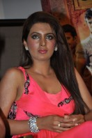 Geeta Basra At Zilla Ghaziabad Movie Audio Launch (8)