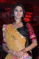 Launch Of Saraswatichandra) (8)
