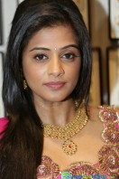 Priyamani at Jos Alukkas Showroom Launch (23)