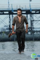 Ram Charan Photos in Nayak (19)