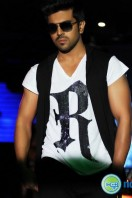 Ram Charan Photos in Nayak (26)