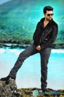 Ram Charan Photos in Nayak (6)
