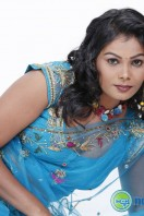 Silpa Spicy Stills (15)