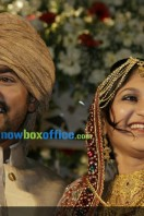 Asif ali wedding (21)