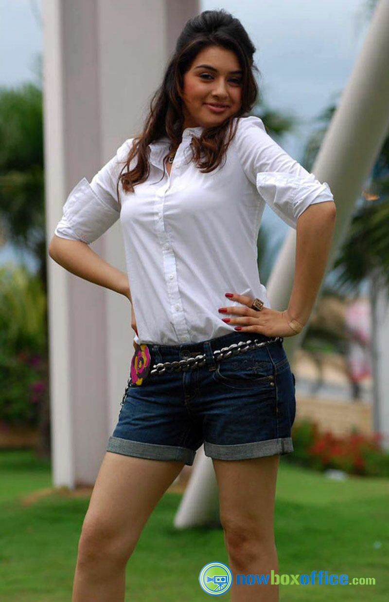 hansika actress photos tamil actress hansika motwani latest hot
