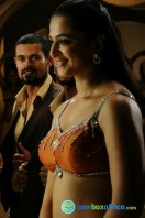 Anushka Photos in Singam 2 (5)
