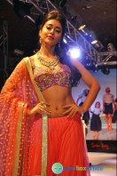 Shriya Saran Ramp Walk at Passionate Foundation Fashion Show (13)