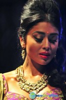 Shriya Saran Ramp Walk at Passionate Foundation Fashion Show (25)