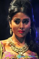 Shriya Saran Ramp Walk at Passionate Foundation Fashion Show (27)
