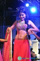 Shriya Saran Ramp Walk at Passionate Foundation Fashion Show (43)