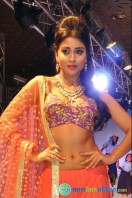 Shriya Saran Ramp Walk at Passionate Foundation Fashion Show (9)