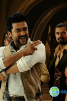 Singam 2 New Gallery (22)