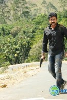 Singam 2 New Gallery (33)