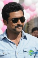 Singam 2 New Gallery (35)