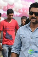 Singam 2 New Gallery (36)