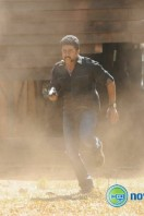 Singam 2 New Gallery (37)