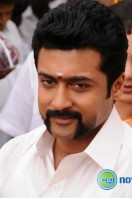 Singam 2 New Gallery (38)