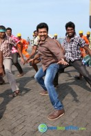 Singam 2 New Gallery (41)