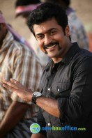 Singam 2 New Gallery (44)