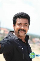 Singam 2 New Gallery (48)