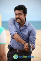 Singam 2 New Gallery (49)