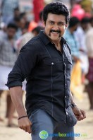 Singam 2 New Gallery (6)