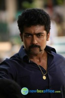 Singam 2 New Gallery (64)