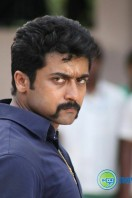 Singam 2 New Gallery (67)