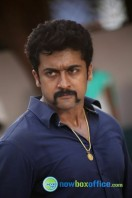 Singam 2 New Gallery (68)