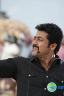 Singam 2 New Gallery (71)