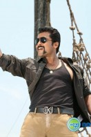 Singam 2 New Gallery (73)