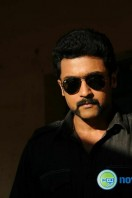Singam 2 New Gallery (75)