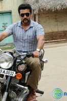 Singam2 Movie Latest Photos (19)