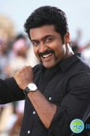 Singam2 Movie Latest Photos (30)