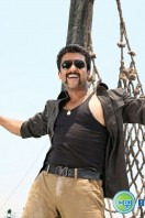 Singam2 Movie Latest Photos (32)