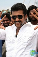 Singam2 Movie Latest Photos (34)