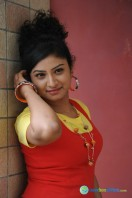 Vishnu Priya New Photos (22)