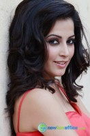 Disha Pandey New Stills