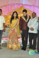 Bharath-Jeshly marriage reception (3)